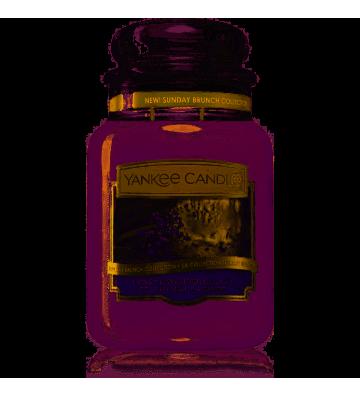 Honey Lavender Gelato 623G